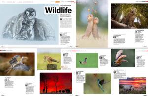 Fotograf des Jahres für DigitalPHOTO